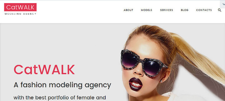 Top 10 Free WordPress themes 2018 Catwalk