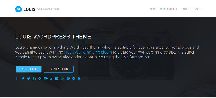 Top 10 Free WordPress themes 2018 Louis